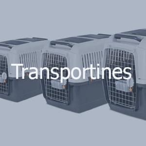 Transportines